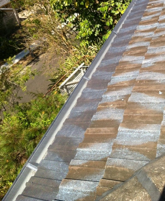 Fire guard on tile roof